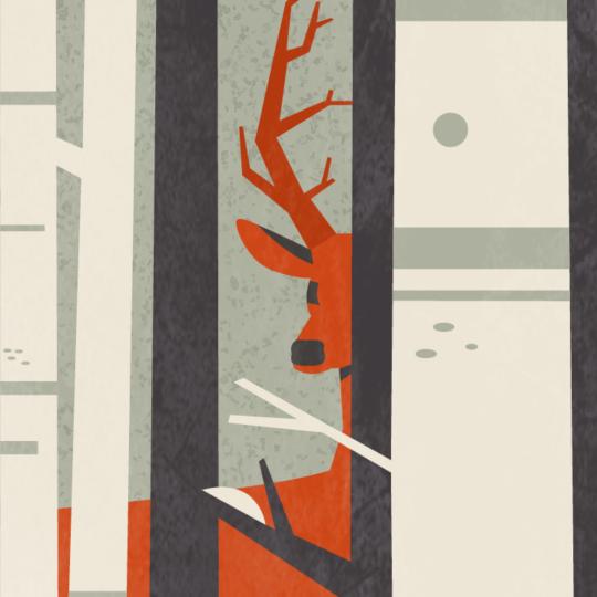 Zoom sur l'illustration Forêt de Noël