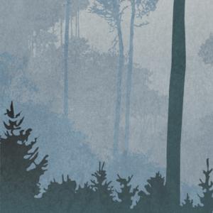 zoom sur l'illustration Paysage brumeux