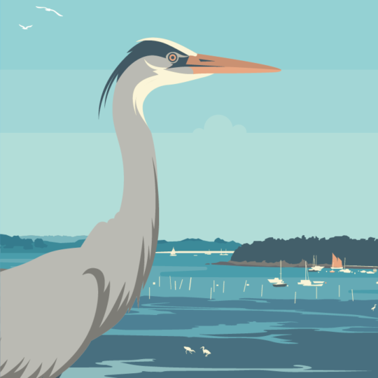 zoom sur l'illustration Morbihan le golfe